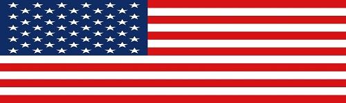 미국전자비자